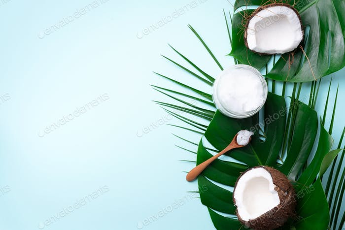 Coconut oil and ripe coconuts, tropical palm and monstera leaves on blue background with copy space