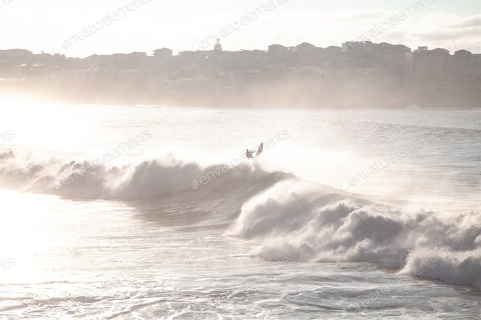 Bondi Sunrise Surfer