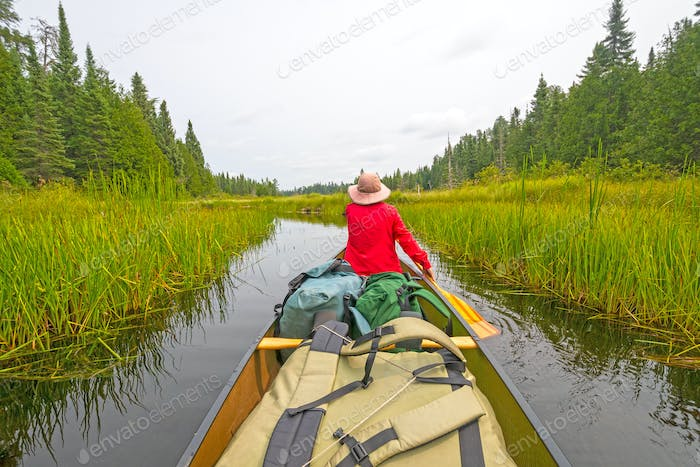 Paddling Through a Grassy Lake
