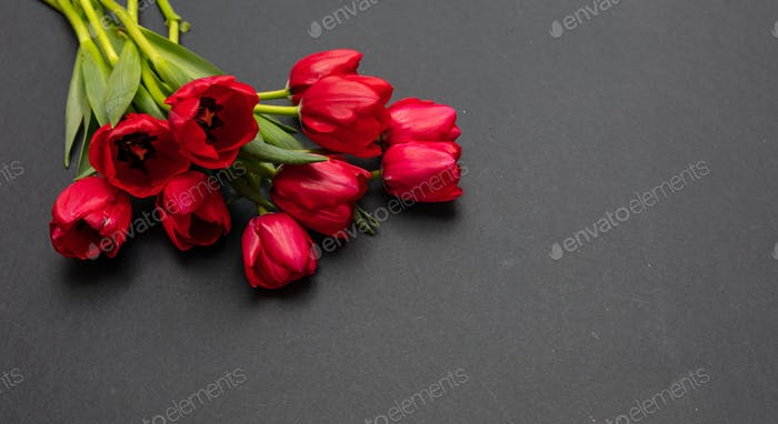 Red tulips bouquet on dark gray background, copy space
