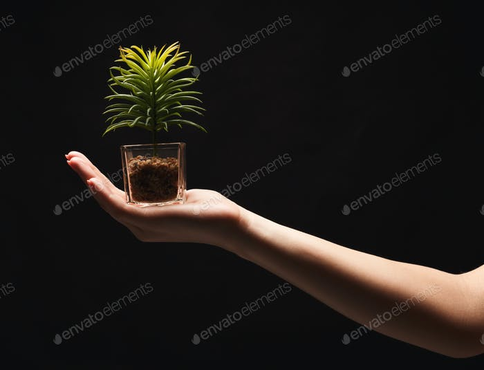 Woman holding green plant on black isolated background