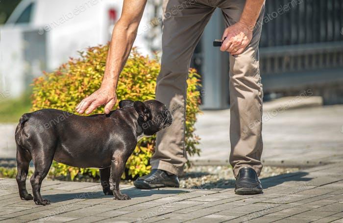 Hund Liebkosung von Caucasian Men