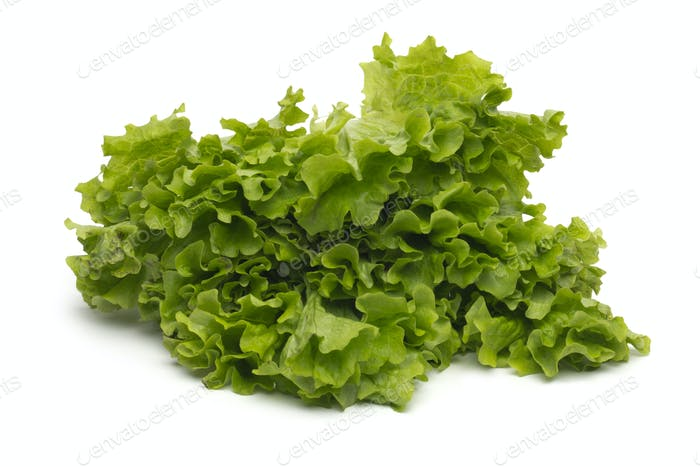 Selection of fresh mixed green salad leaves
