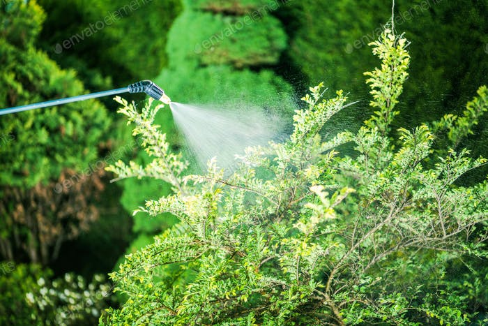 Insecticide in the Garden