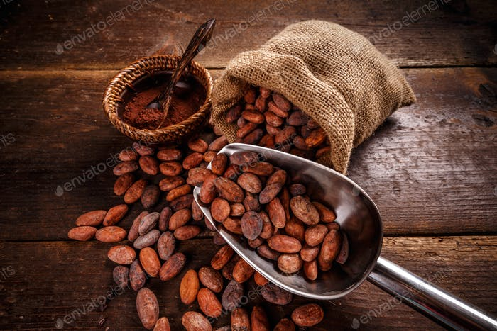 Still life of cocoa beans