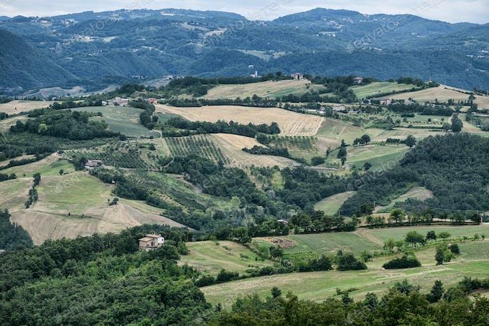 Summer landscape near Serramazzoni (Modena, Italy)