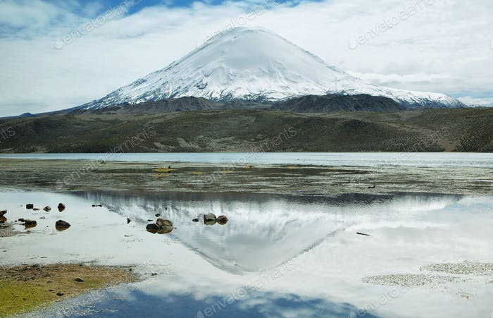 Snow capped high mountains reflected in Lake Chungara