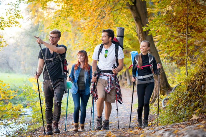 riends with backpacks trekking in nature, walking through the woods