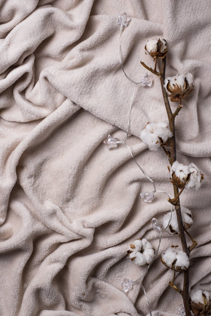 Cotton branch and light blanket