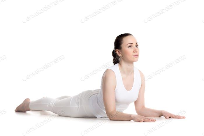 Ardha Bhujangasana yoga Pose