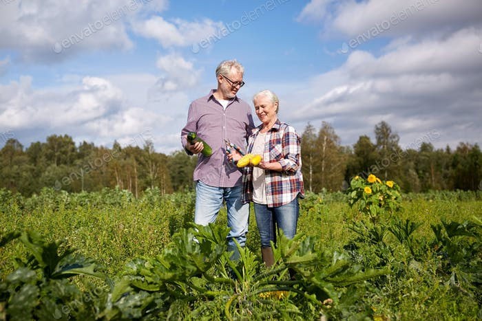happy senior couple on squash garden bed at farm