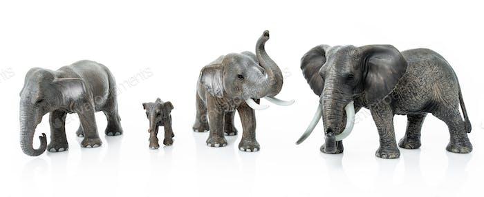 Elephant Family  isolated on white background.  elephant toys
