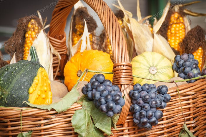 Basket with harvest decorations made of decorative pumpkins and fruits