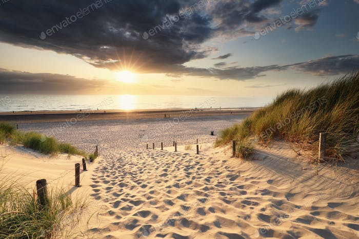 Thumbnail for golden sunset light over sand path to North sea beach
