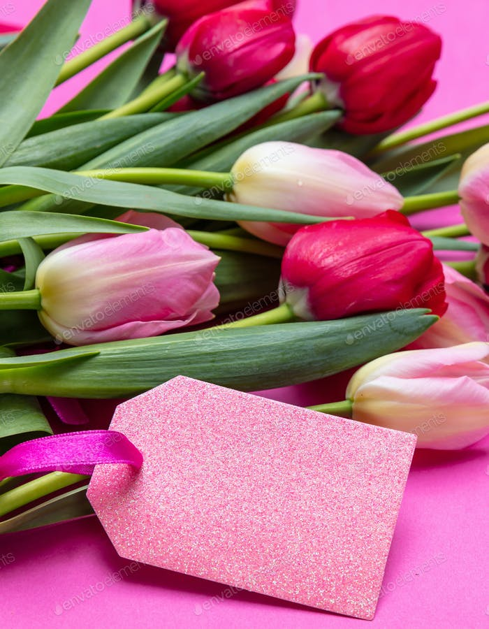 Tulips bouquet and blank tag on bright pink background, copy space, closeup view