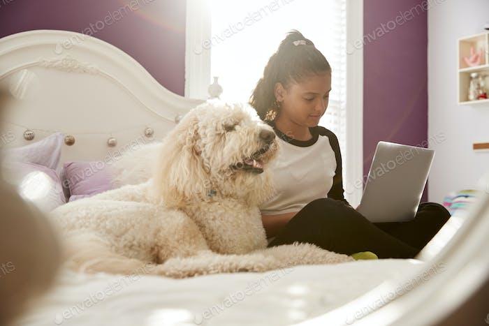 Junge teen Mädchen mit Laptop auf Ihr Bett neben Haustier Hund