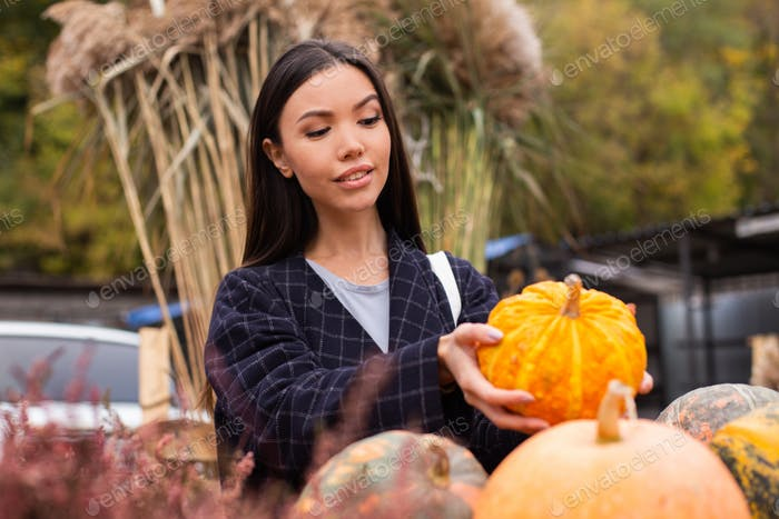Young beautiful woman dreamily buying pumpkin for Halloween day at autumn farm shop outdoor