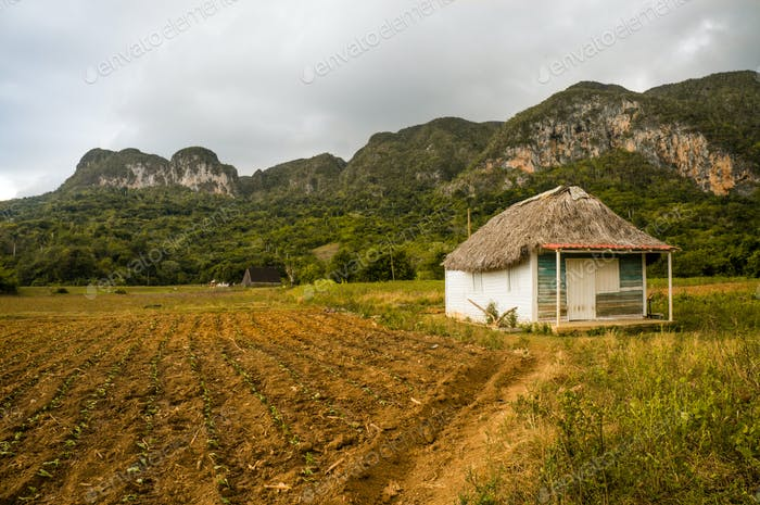 Scenic Landscape With Little House in Mountains, Cuba, Vinales Valley