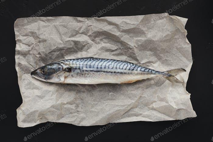 Rohfisch auf Pergament, Draufsicht