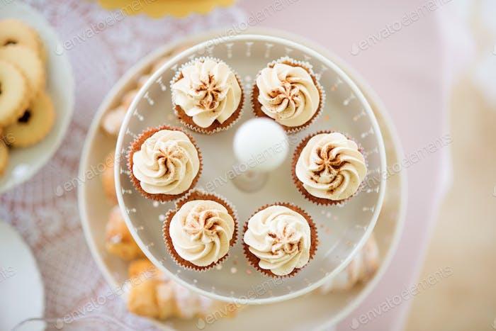Close up, cupcakes with vanilla cream. Studio shot.