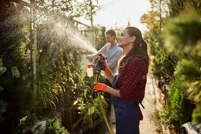 Work in the garden. Girl gardener sprays water and a guy sprays fertilizer on plants in the