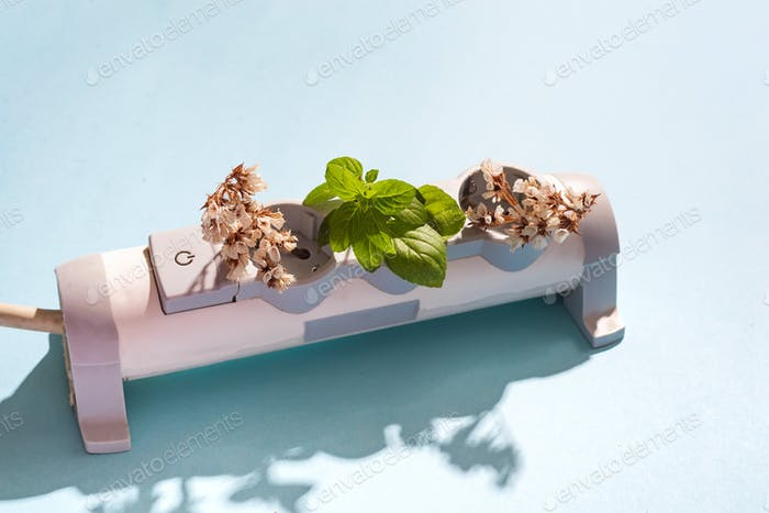 Power Strip Garden and eco electric plug on the blue background
