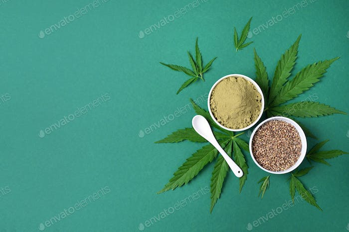 Hemp products - cannabis leaves, seeds, hemp protein powder, flour on green background. Top view