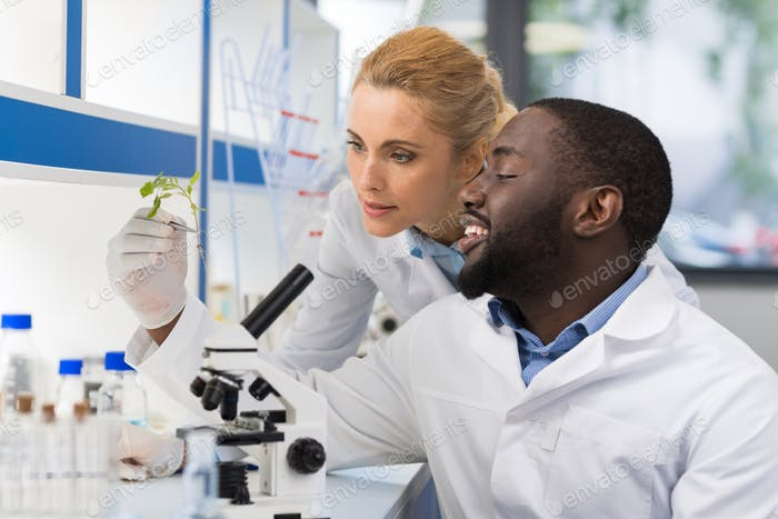 Scientists Looking At Sample Of Plant Working In Genetics Laboratory, Mix Race Couple Of Researchers