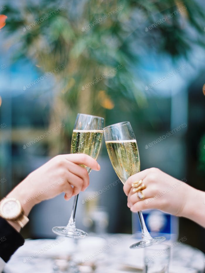 Two women toasting each other with glasses of champagne.