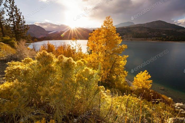 Autumn in Sierra Nevada