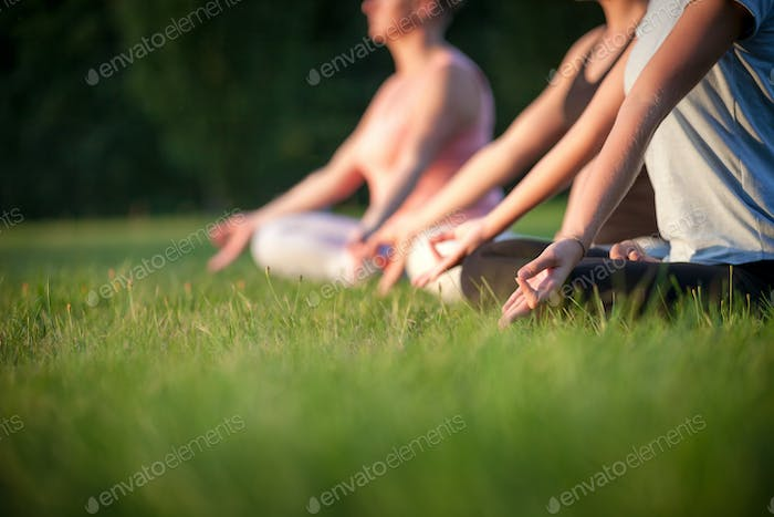 Yoga in the park, group of people practicing yoga and meditating while sunset