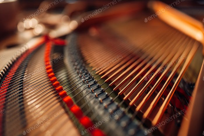 Inside grand piano, strings closeup, nobody