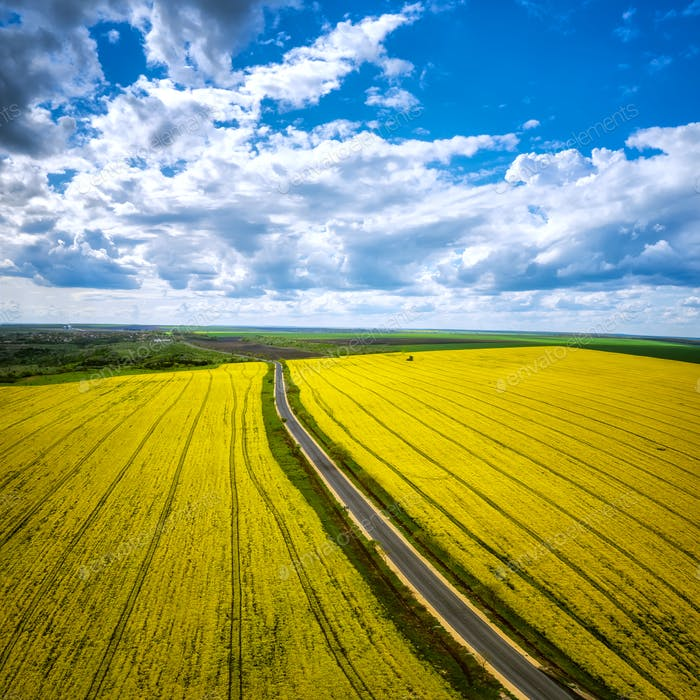 Aerial view with rapeseed field