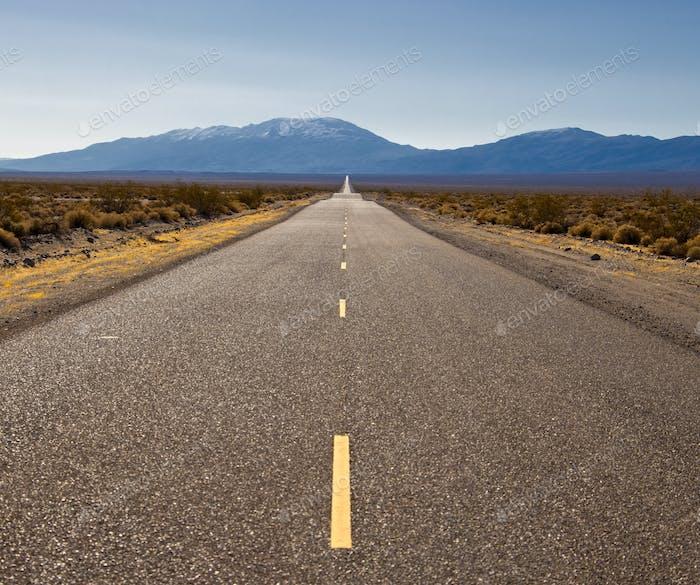 Highway Through Desert