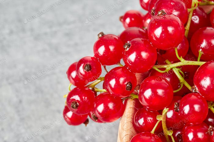 Close up picture of ripe juicy red currant berries.