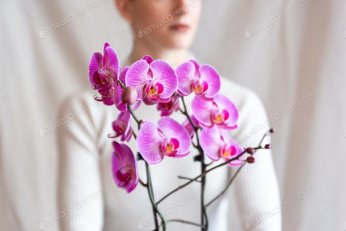 Woman holding pink orchid