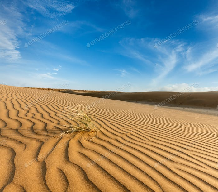 Thumbnail for Dunes of Thar Desert, Rajasthan, India