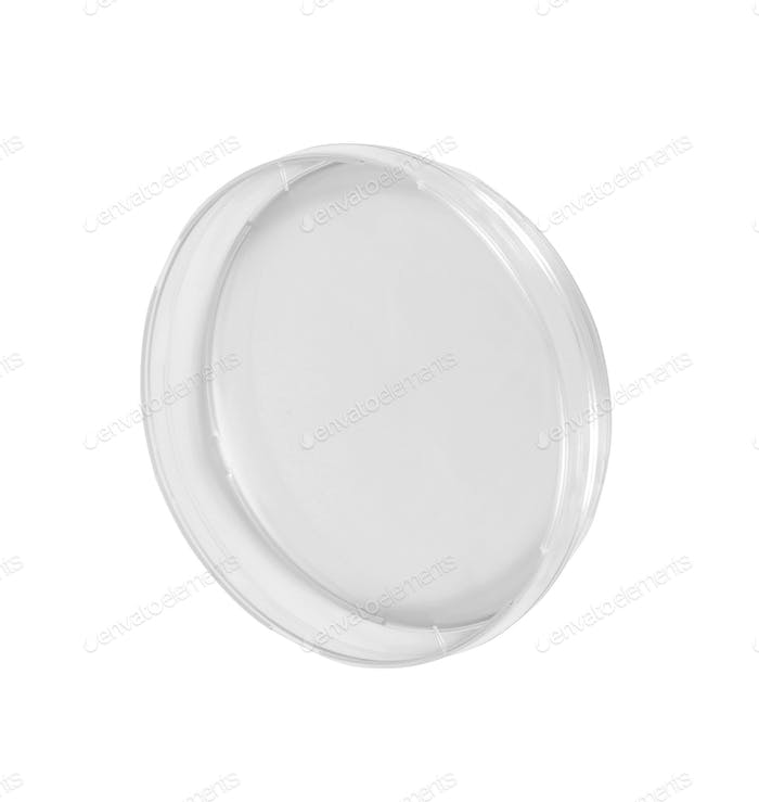 Petri dish isolated on white