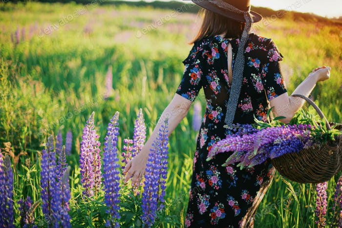 Beautiful woman walking with wicker rustic basket in sunny lupine field. Tranquil moment