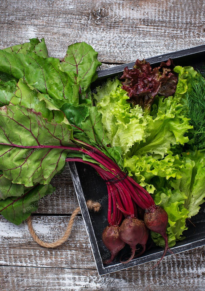 Beetroots, lettuce and parsley in wooden box