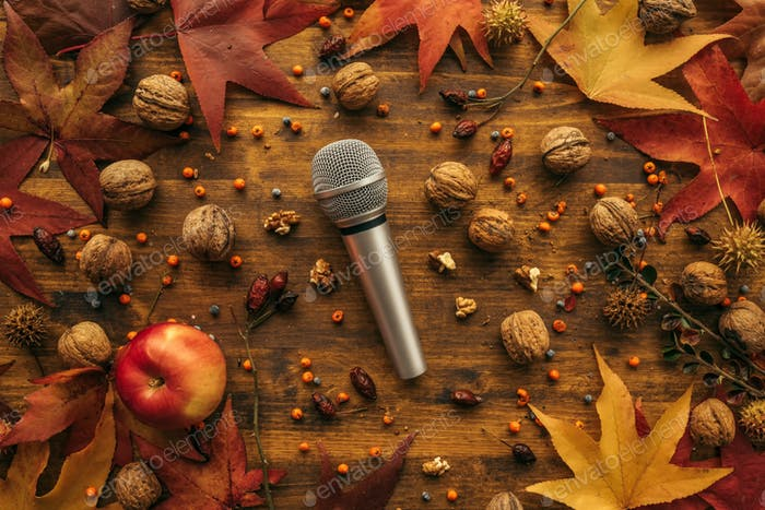 Flat lay top view microphone with autumn arrangement