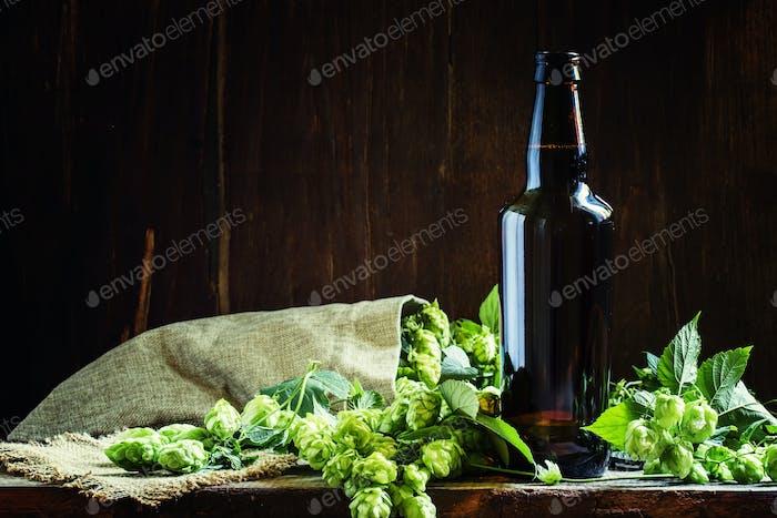 Lagerbier in brauner Flasche mit Hopfenzapfen