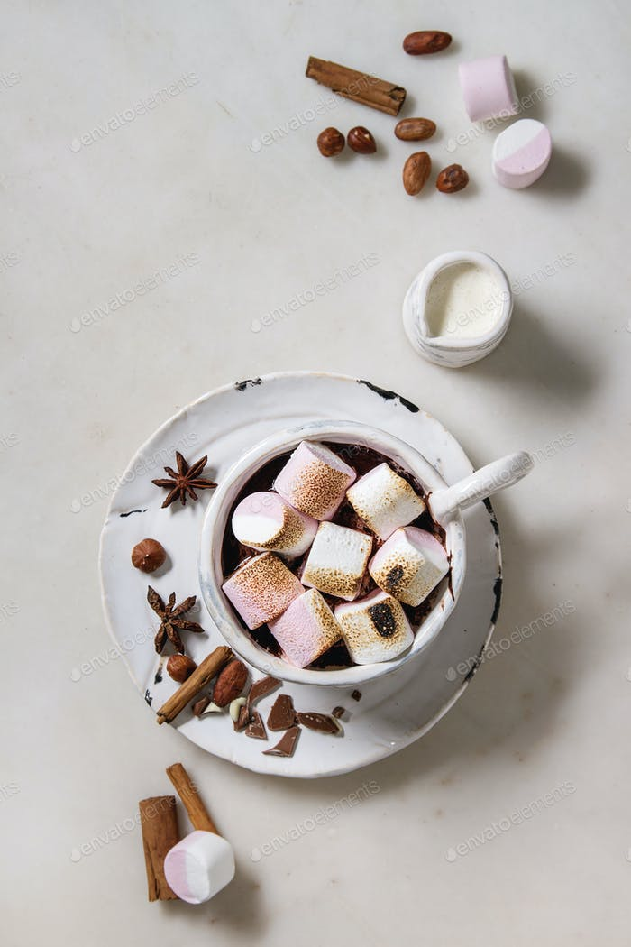 Cup of hot chocolate with marshmallow