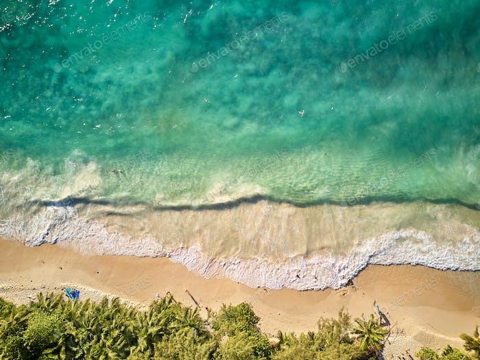 Strand auf den Seychellen Luftaufsicht