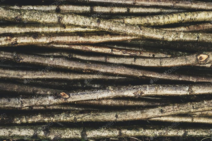 High angle close up of bunch of wooden stakes used in traditional hedge building.