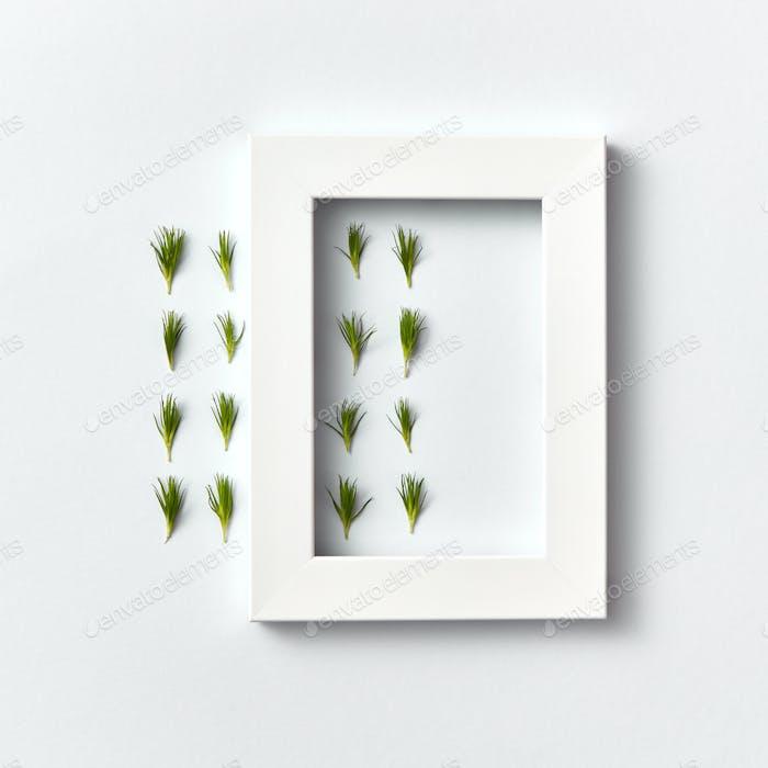 Frorale Komposition mit frischen Nadeln und weißem Rahmen auf hellem Hintergrund