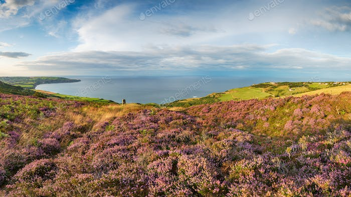 A panoramic view of the Yorkshire coast