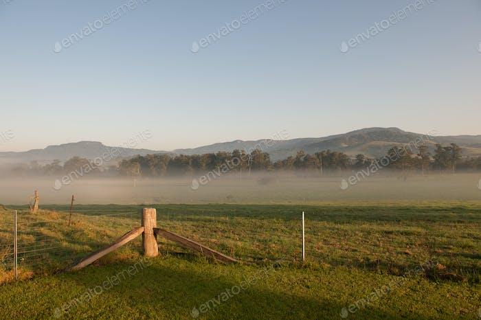 Farmland Fog
