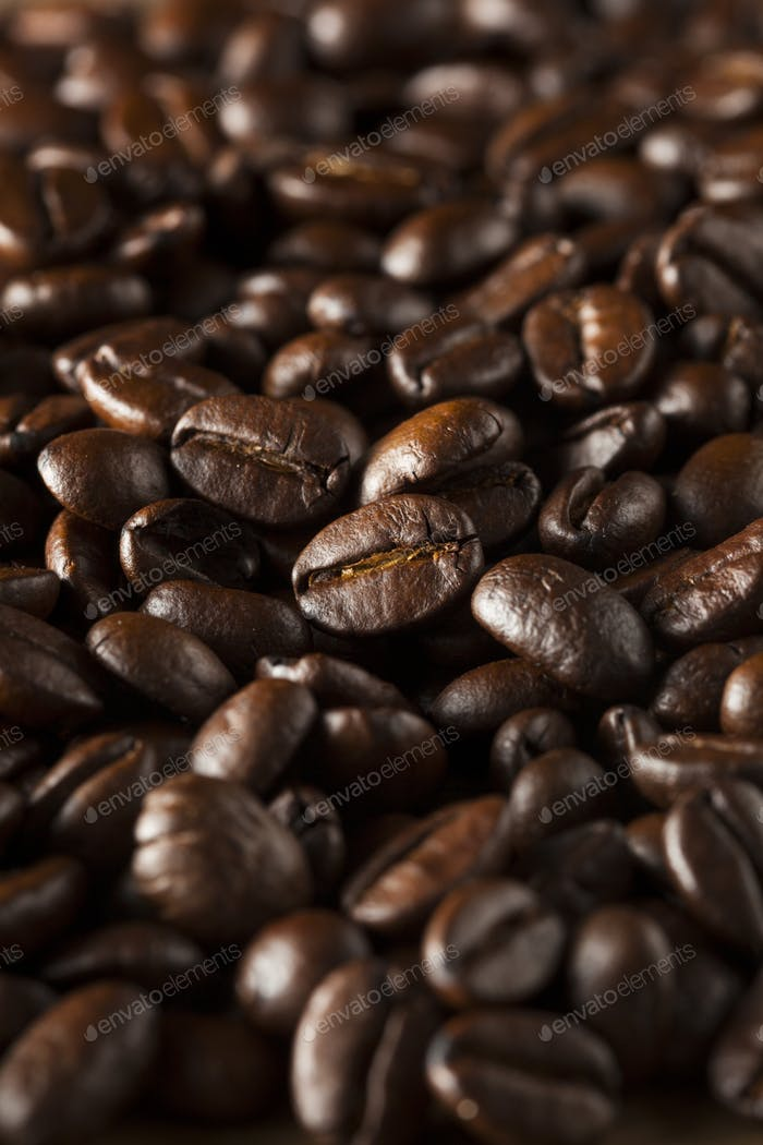 Organic Dry Roasted Coffee Beans