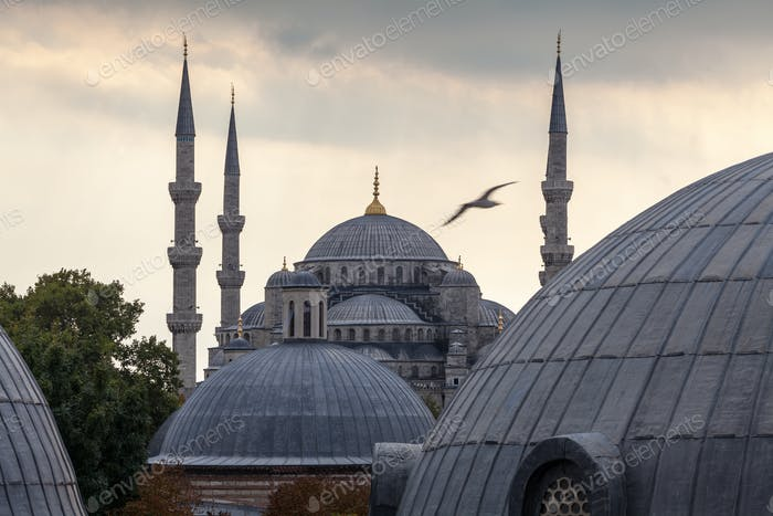 54547,Domes and towers of Blue Mosque, Istanbul, Turkey